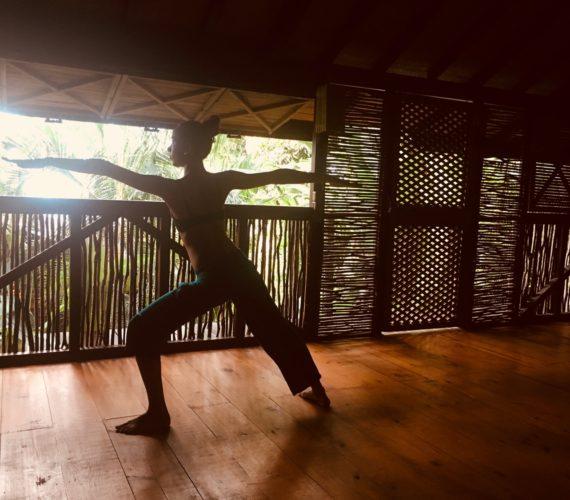Journée Yoga – Détox