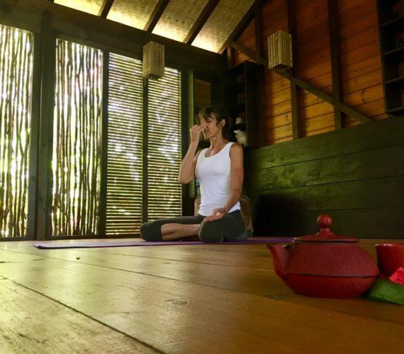 Ma Journée Yoga-Détox à Tendacayou
